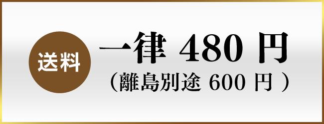 送料 一律480円(離島別途600円)